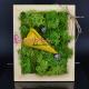 Cadou Special - Tablou viu cu Licheni decorativi verzi