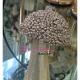 Decoratiune Craciun ciuperca aurie cu sclipici