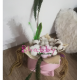 Aranjament Floral in Vas Venus roz Femeie - Flori Uscate Bumbac si Pene