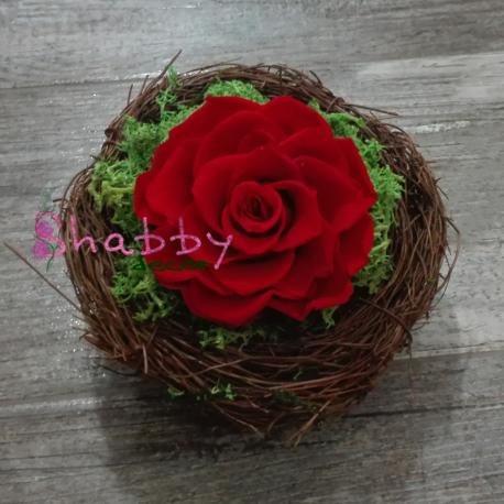 Aranjament cadou cu trandafir rosu criogenat