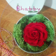 Aranjament floral cu trandafir rosu criogenat
