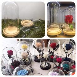 "Vas sticla ""Beauty and the Beast Rose"""